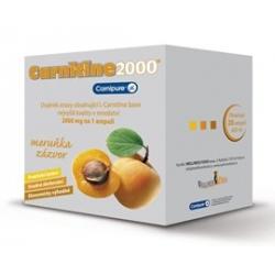 Carnitine 2000mg Různé příchutě 20x25ml