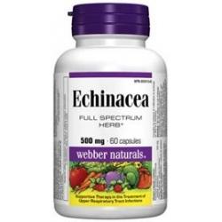 WN Echinacea 500mg 120cps